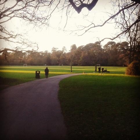 Bedford park, taken 24th December 2014.